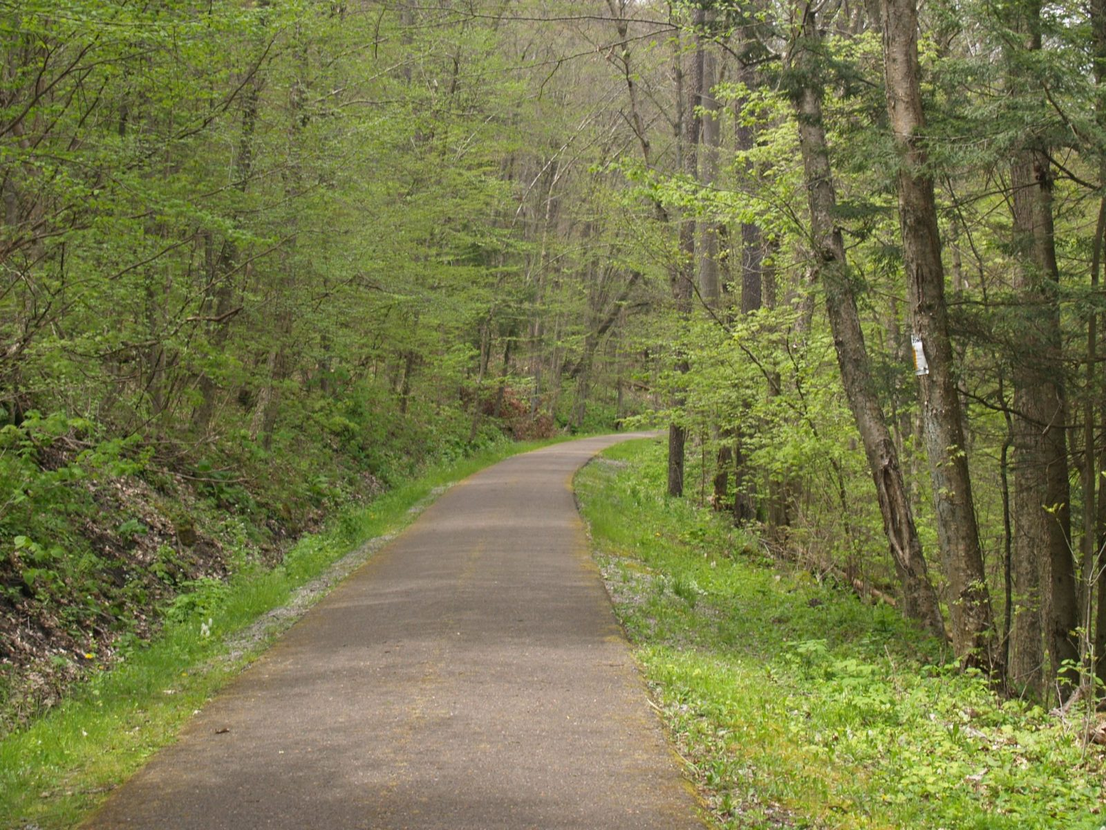 Picture of the Oil Creek Bike Trail near Drake Well